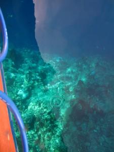 シラデン島でダイビング