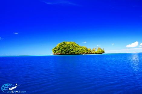 パラオ くじら島